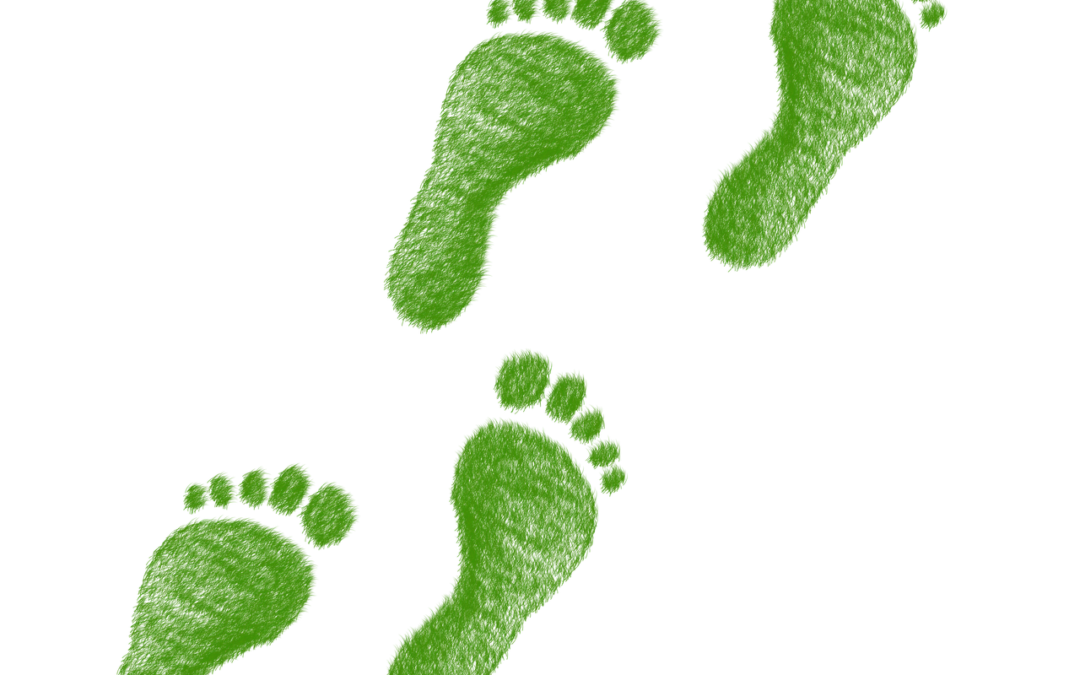 Ökogas und Ökostrom oder wie Du mit grünem Daumen verkaufen lernst